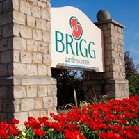 Brigg Garden centre and Lincoln