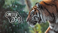 Chester Zoo and Blackpool