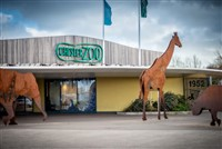 Chester Zoo and Liverpool