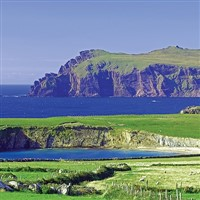 Delightful Dingle Bay with Dolphins