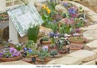 Harrogate & Harlow Carr Alpine Garden