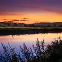 Turkey & Tinsel Wye Valley