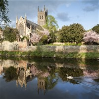 Cotswold and the Blossom Trail