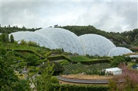 Newquay and Eden Project