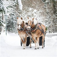 Christmas in the Austrian Tyrol