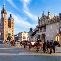 Discover Historic Poland & Auschwitz