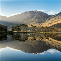 Lake District and Mistletoe Markets