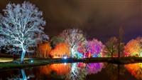 RHS Glow Illuminations