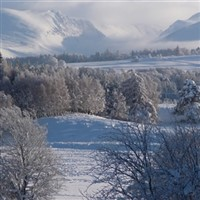 Christmas in the Cairngorms